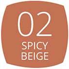 02 Spicy Beige
